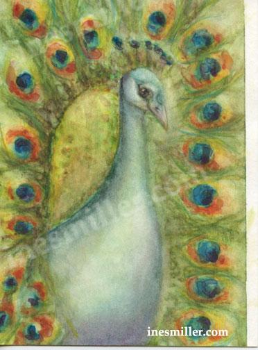 watercolor painting original home decor peacock- Ines-miller fine art